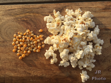 popcorn kernels and cooked